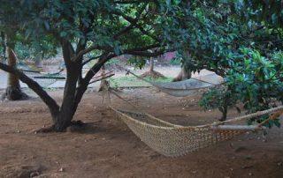 Hammocks at Ecomantra Experiential Eco Camp