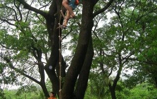 Ladder Climbing Outdoor Adventures at Ecomantra Experiential Eco Camps & Resorts
