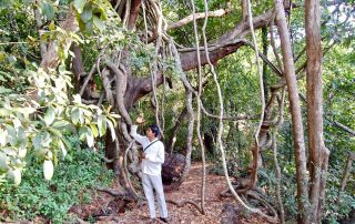Hiking and Trekking at Ecomantra Experiential Eco Camps & Resorts