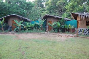 Experiential Eco Lodges - Eco Camps