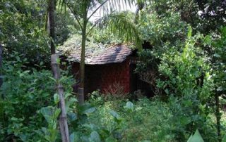 Green Cottages • Experiential Eco Camps, Resorts and Villas