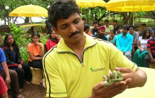 Snake Alive at Ecomantra Experiential Eco Camps & Resorts