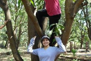Tree Climbing • Outdoor Adventures at Ecomantra Experiential Eco Camps & Resorts