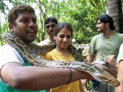 Ecomantra Events - Interactive Workshop • Snake Alive